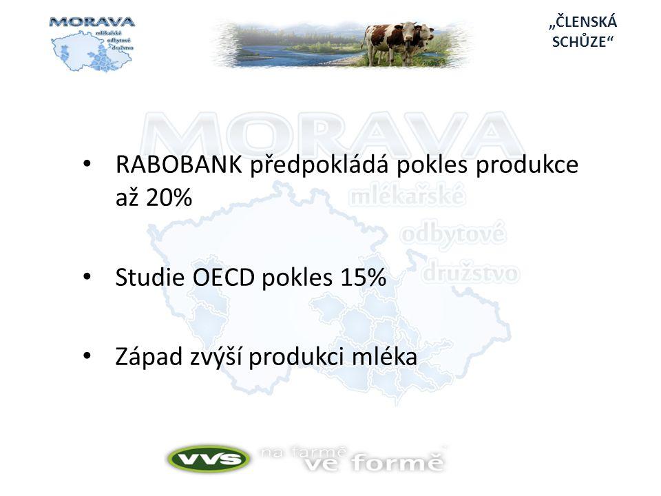 RABOBANK předpokládá pokles produkce až 20%