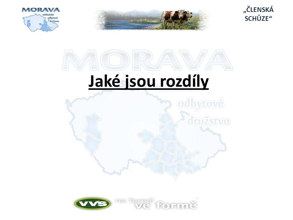 """""""ČLENSKÁ SCHŮZE Jaké jsou rozdíly"""