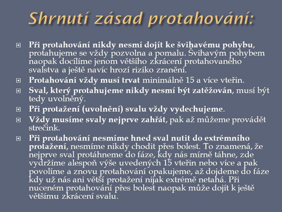 Shrnutí zásad protahování: