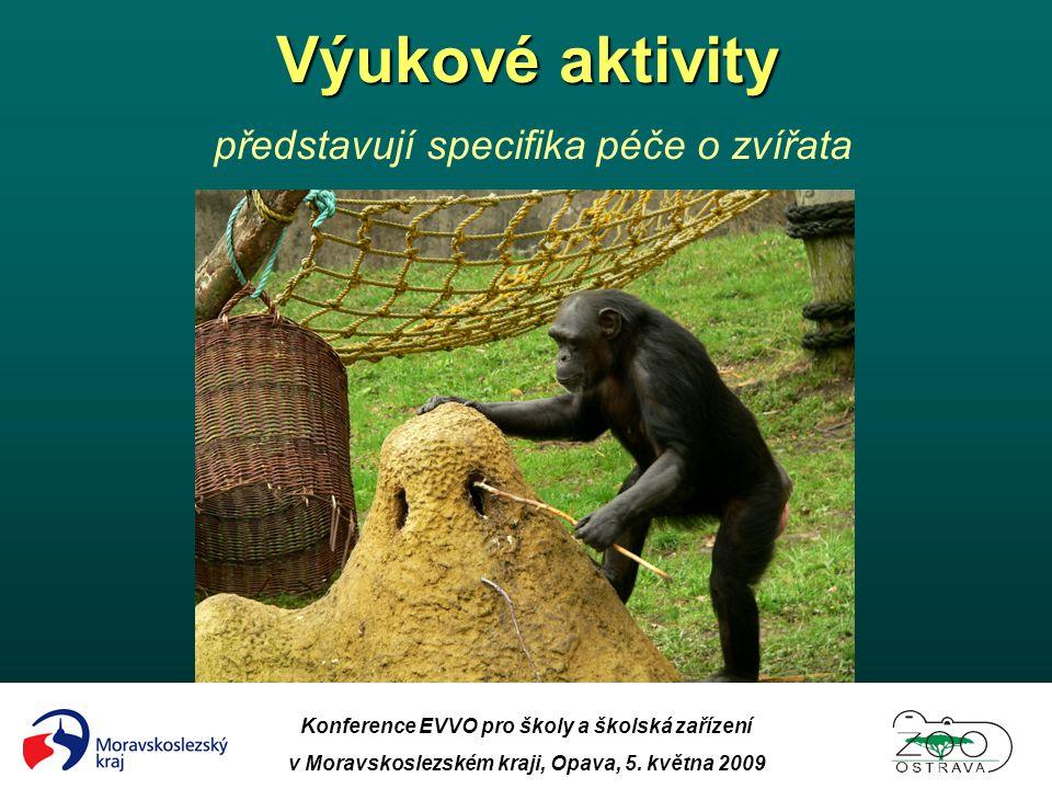 Výukové aktivity představují specifika péče o zvířata