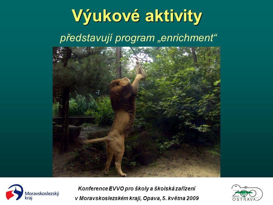 """Výukové aktivity představují program """"enrichment"""