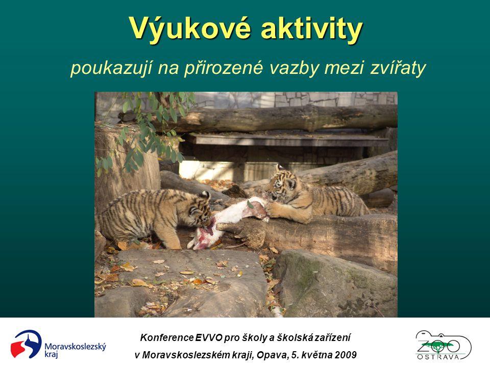 Výukové aktivity poukazují na přirozené vazby mezi zvířaty
