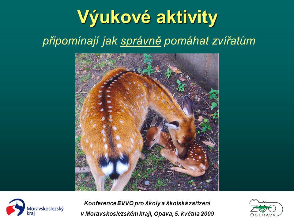 Výukové aktivity připomínají jak správně pomáhat zvířatům