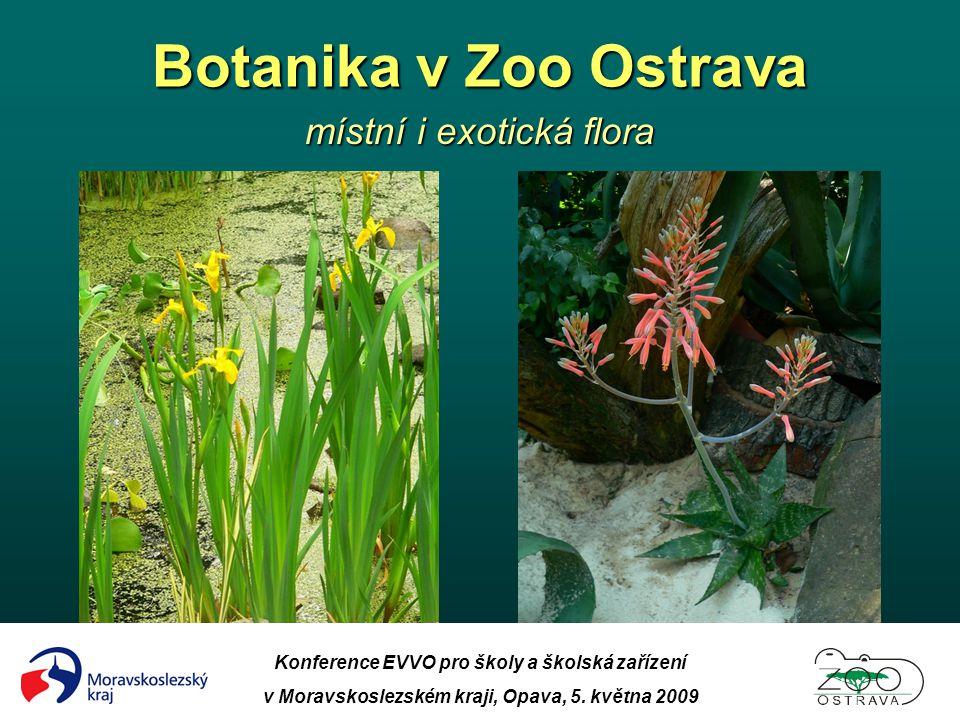 Botanika v Zoo Ostrava místní i exotická flora