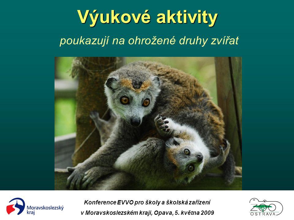 Výukové aktivity poukazují na ohrožené druhy zvířat