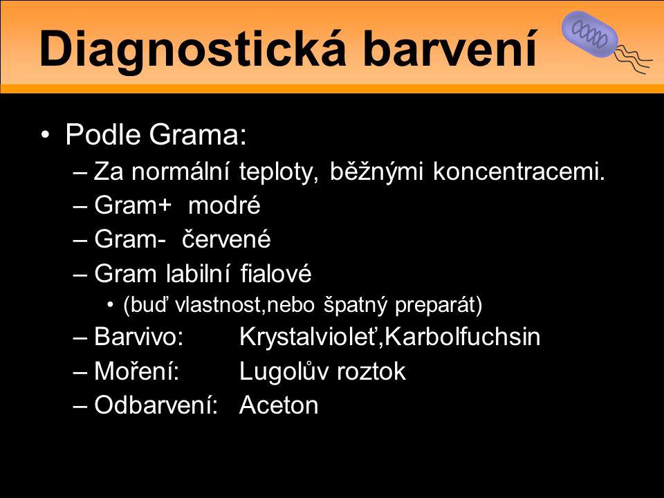 Diagnostická barvení Podle Grama: