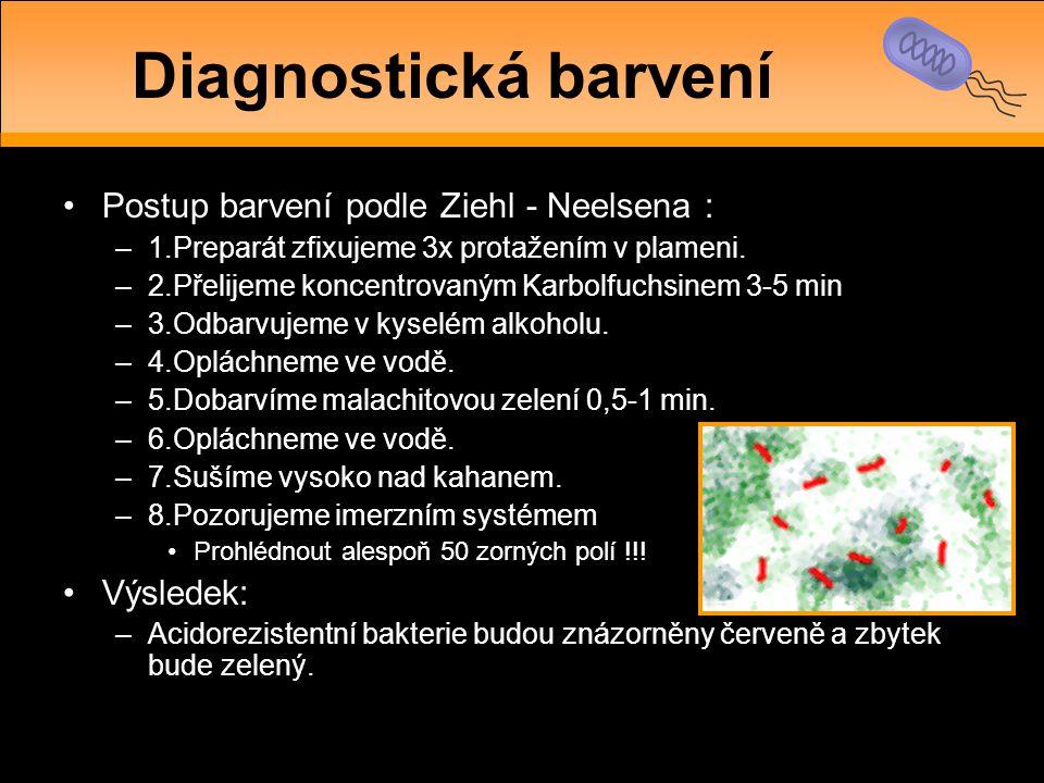 Diagnostická barvení Postup barvení podle Ziehl - Neelsena : Výsledek: