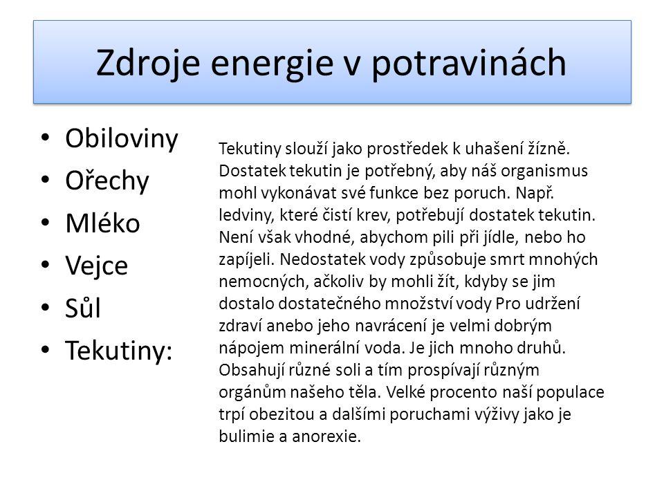 Zdroje energie v potravinách