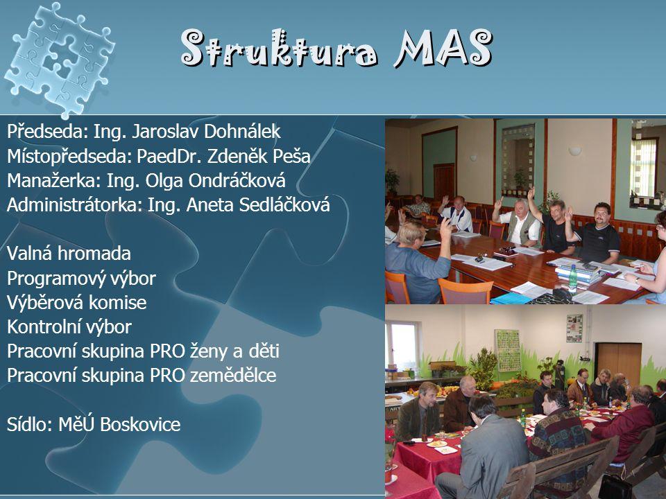 Struktura MAS Předseda: Ing. Jaroslav Dohnálek