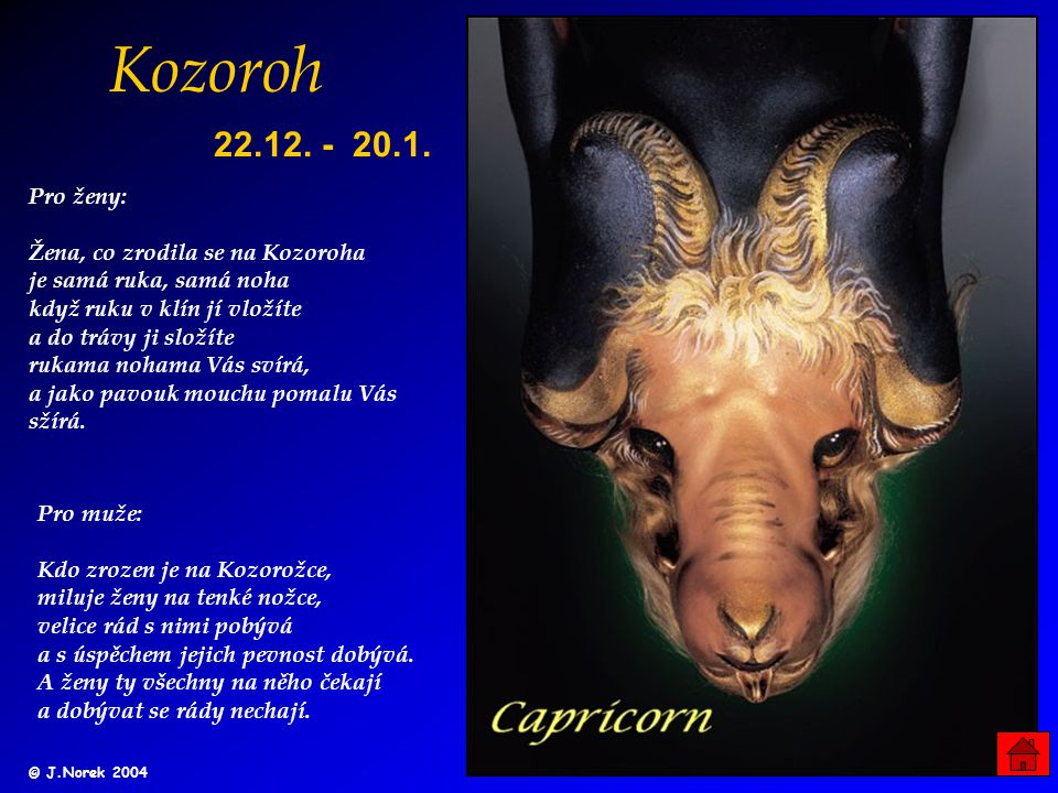 Kozoroh 22.12. - 20.1.