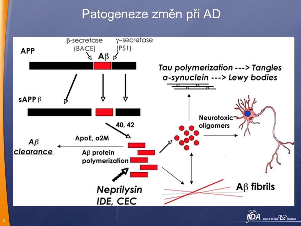 Patogeneze změn při AD
