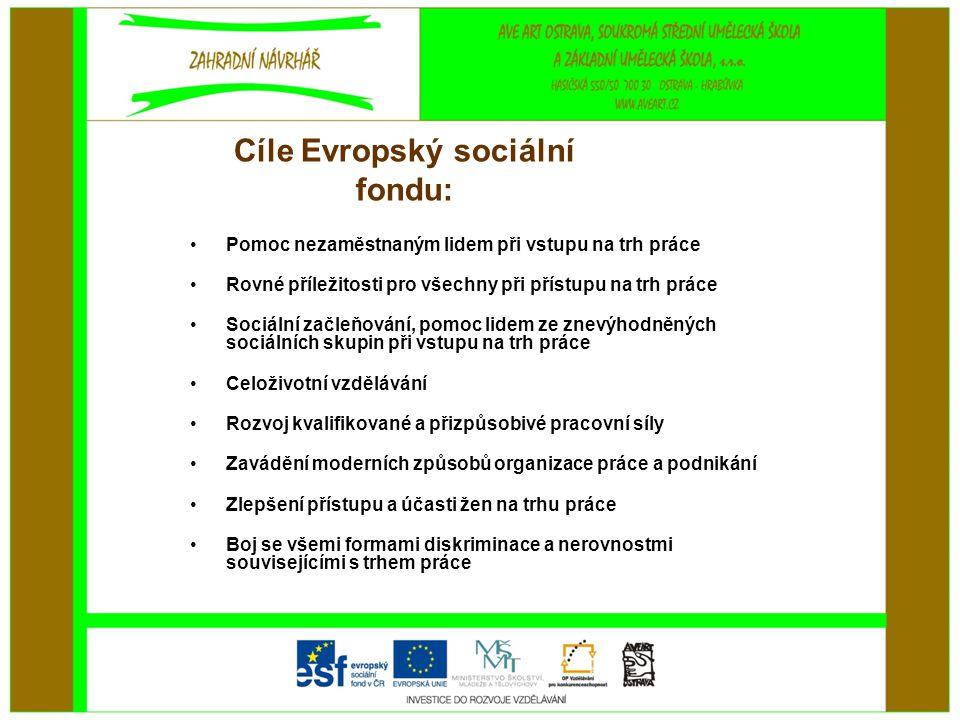 Cíle Evropský sociální fondu: