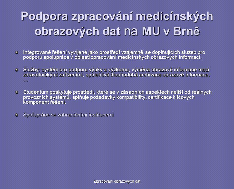 Podpora zpracování medicínských obrazových dat na MU v Brně