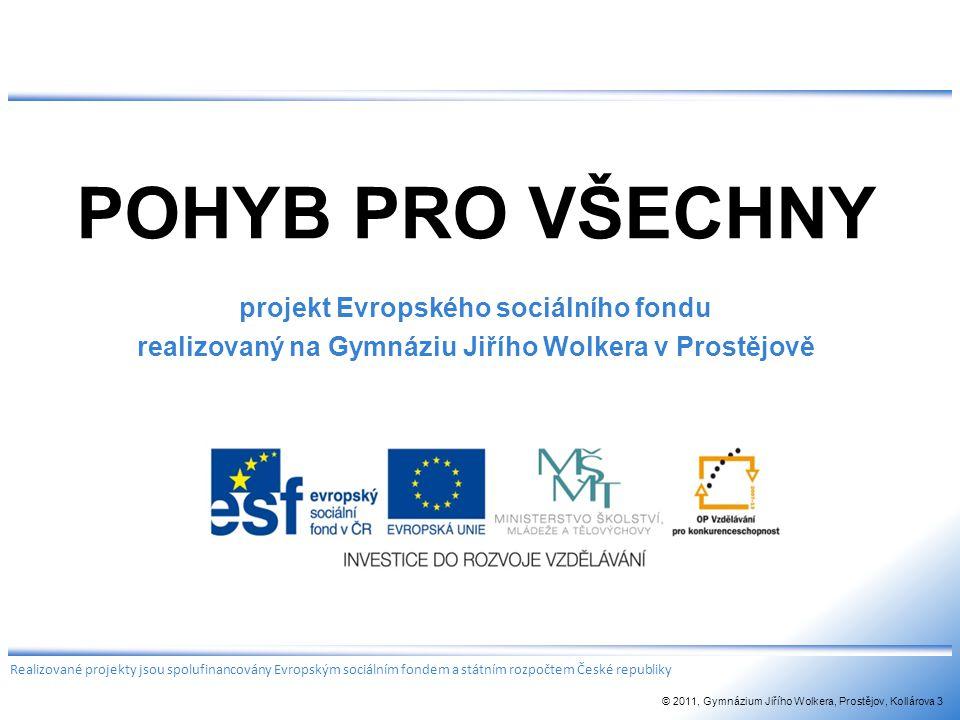 POHYB PRO VŠECHNY projekt Evropského sociálního fondu