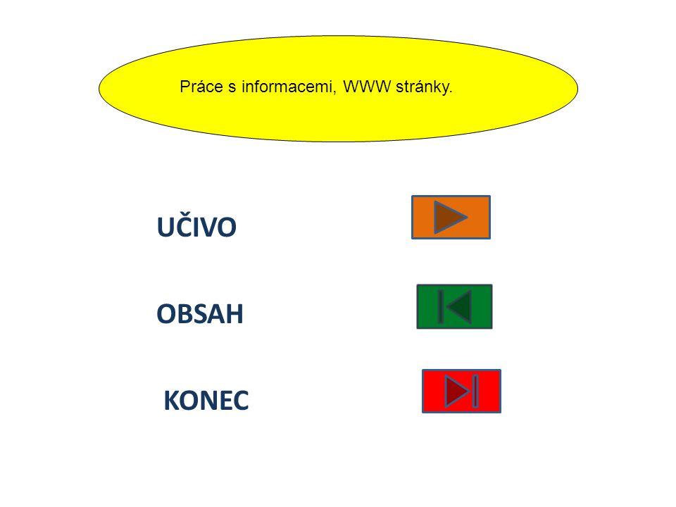 Práce s informacemi, WWW stránky.