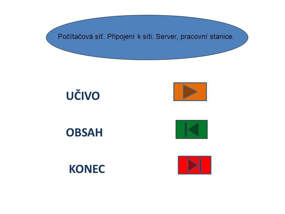 Počítačová síť. Připojení k síti. Server, pracovní stanice.