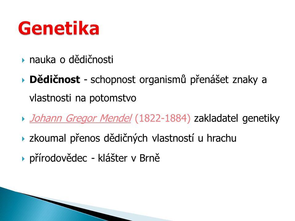 Genetika nauka o dědičnosti