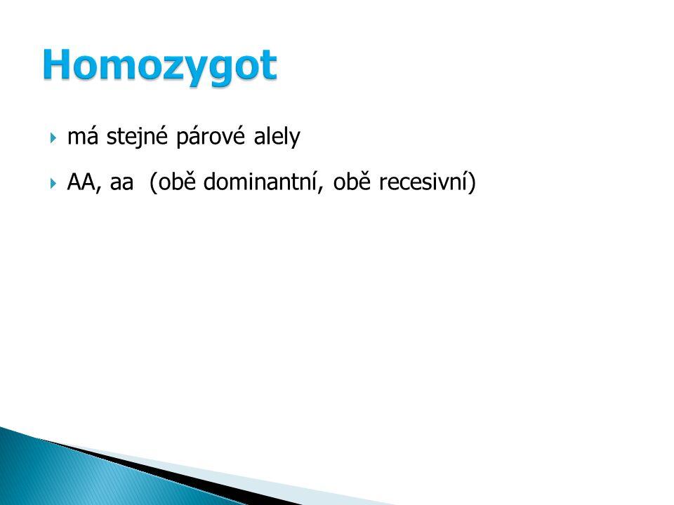 Homozygot má stejné párové alely