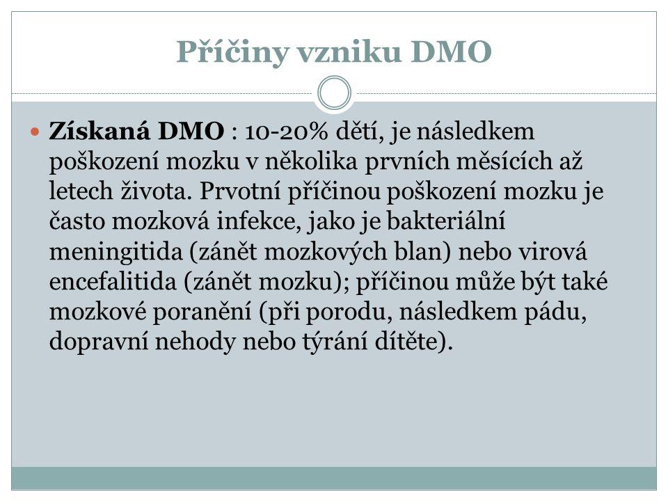 Příčiny vzniku DMO