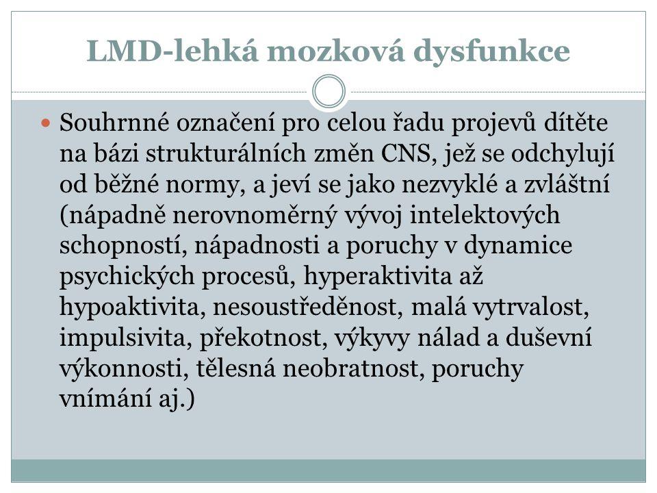 LMD-lehká mozková dysfunkce
