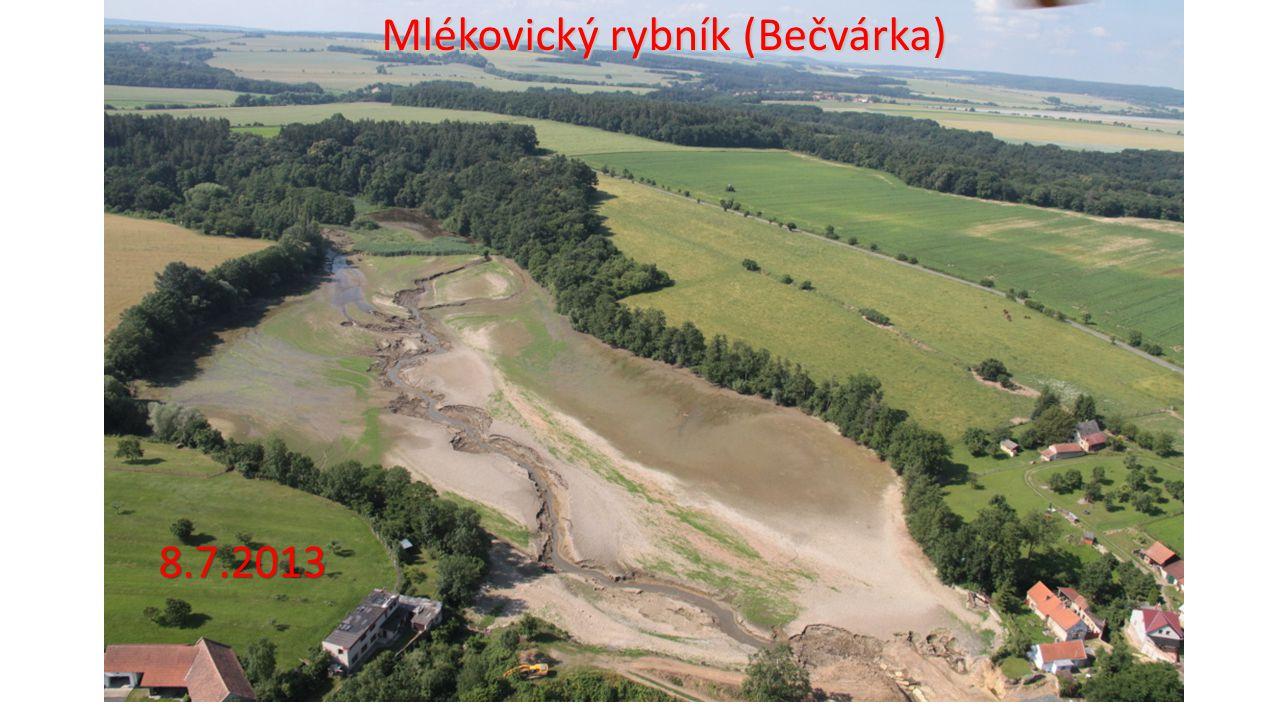 Mlékovický rybník (Bečvárka)