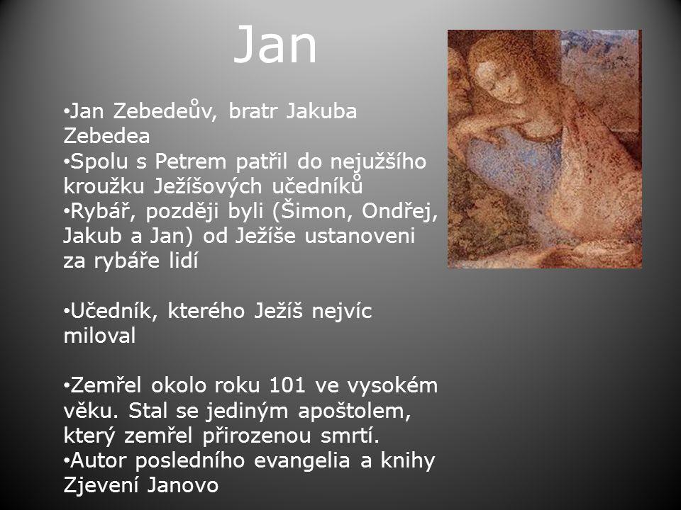 Jan Jan Zebedeův, bratr Jakuba Zebedea