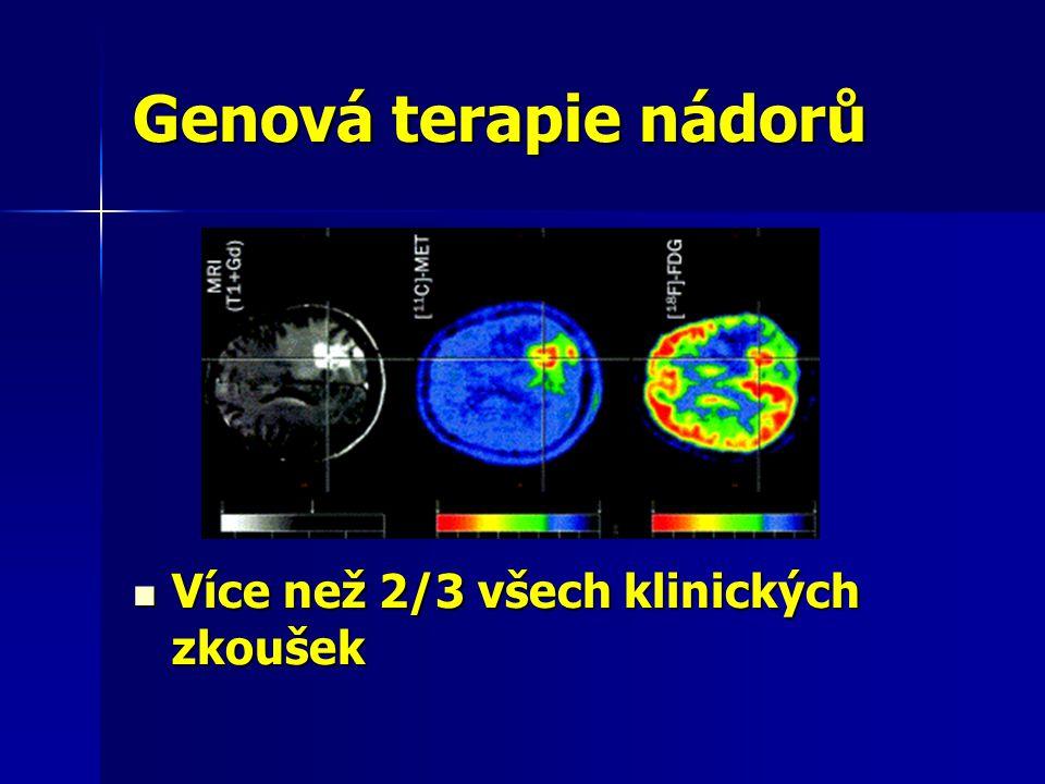 Genová terapie nádorů Více než 2/3 všech klinických zkoušek