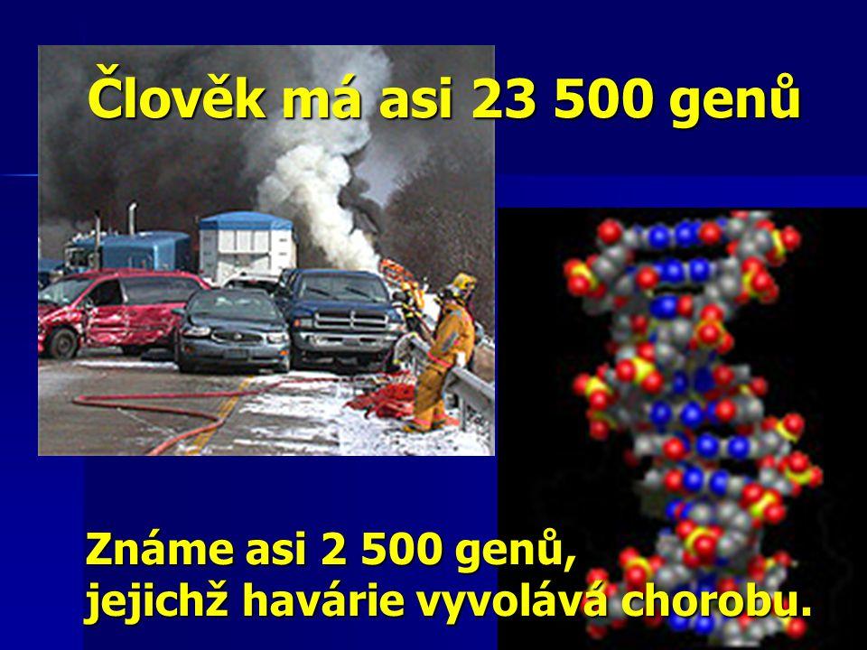 Člověk má asi 23 500 genů Známe asi 2 500 genů,