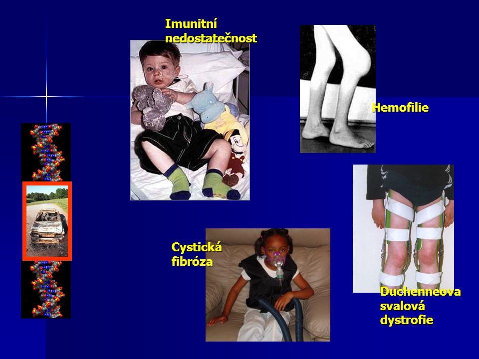 Imunitní nedostatečnost Hemofilie Cystická fibróza Duchenneova svalová dystrofie