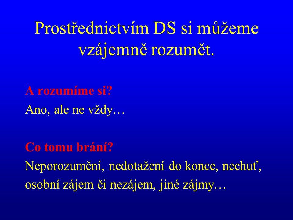 Prostřednictvím DS si můžeme vzájemně rozumět.