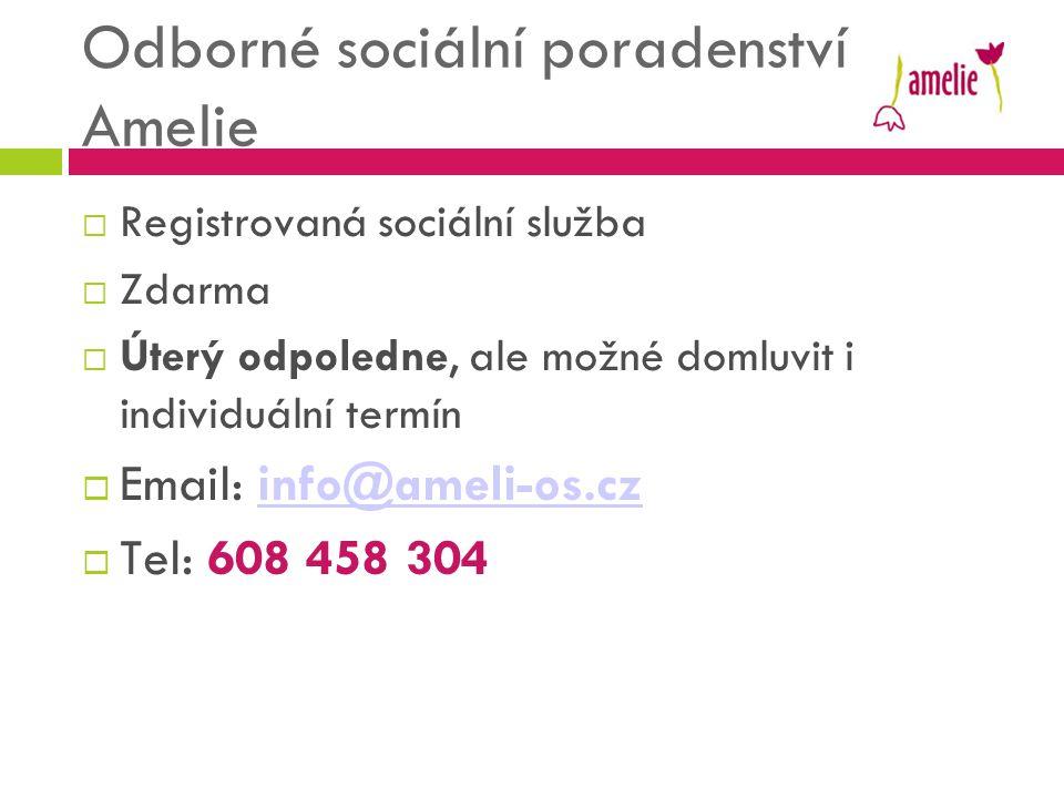 Odborné sociální poradenství Amelie