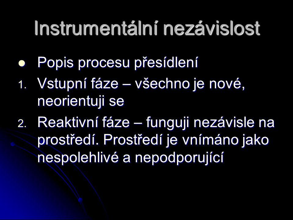 Instrumentální nezávislost