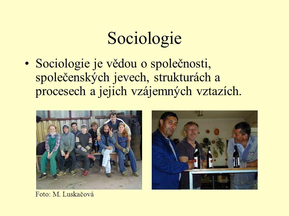 Sociologie Sociologie je vědou o společnosti, společenských jevech, strukturách a procesech a jejich vzájemných vztazích.