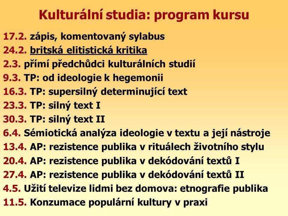 Kulturální studia: program kursu