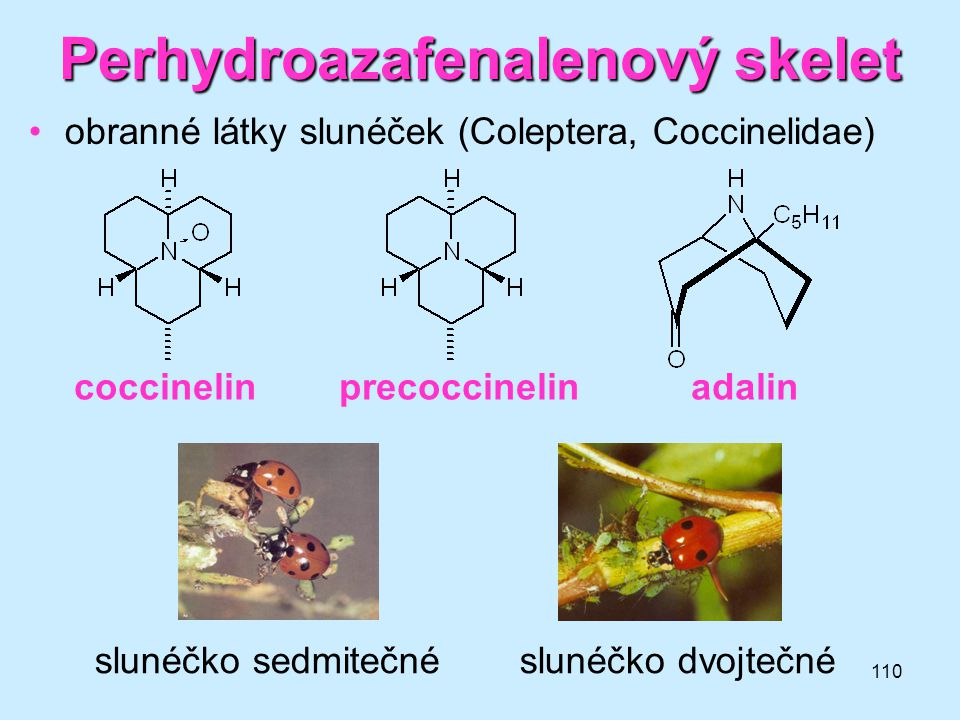 Perhydroazafenalenový skelet