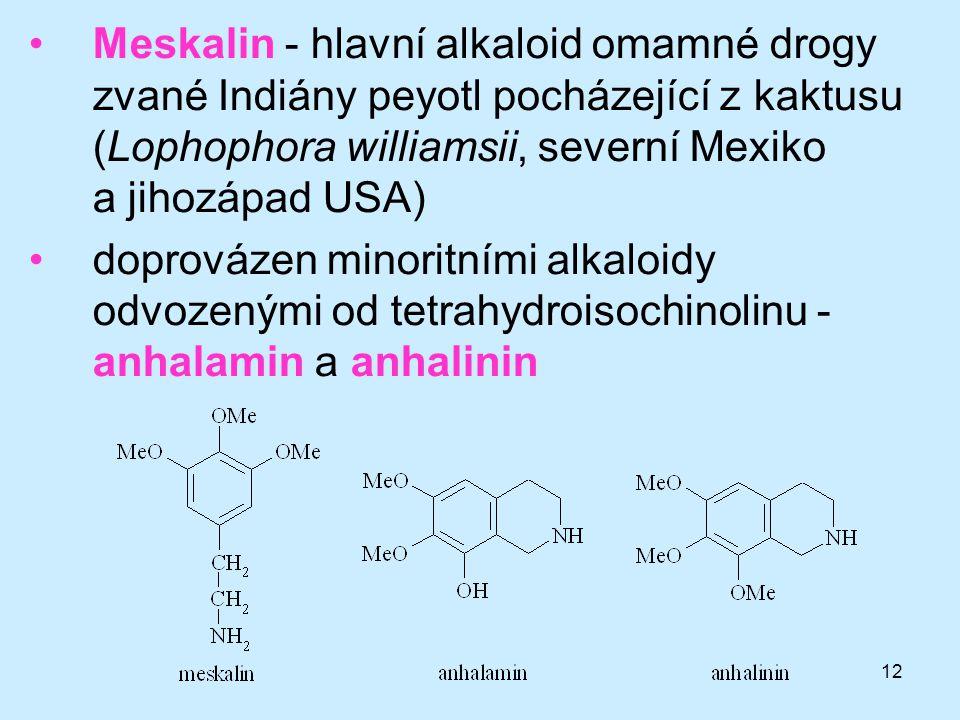 Meskalin - hlavní alkaloid omamné drogy zvané Indiány peyotl pocházející z kaktusu (Lophophora williamsii, severní Mexiko a jihozápad USA)
