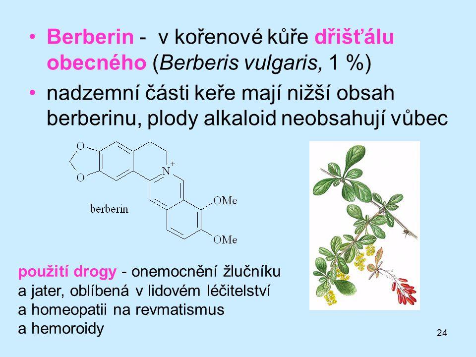 Berberin - v kořenové kůře dřišťálu obecného (Berberis vulgaris, 1 %)