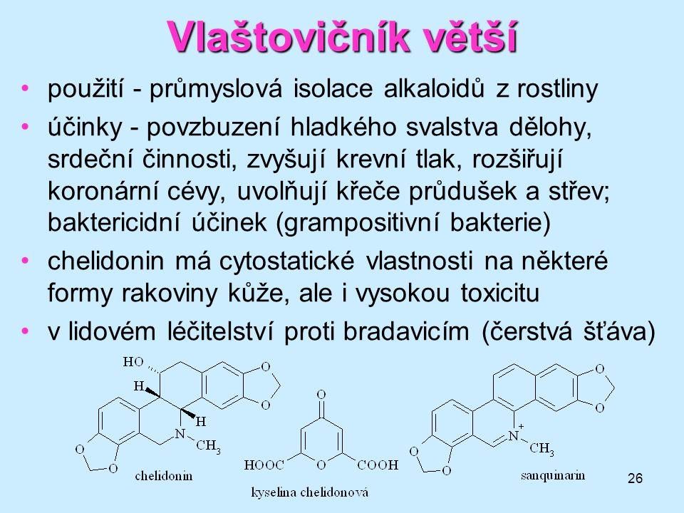 Vlaštovičník větší použití - průmyslová isolace alkaloidů z rostliny