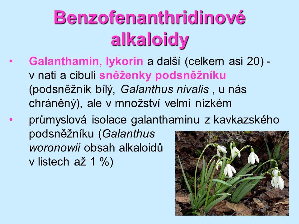 Benzofenanthridinové alkaloidy