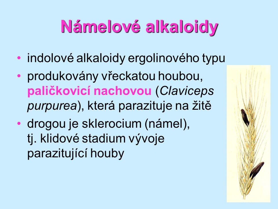 Námelové alkaloidy indolové alkaloidy ergolinového typu