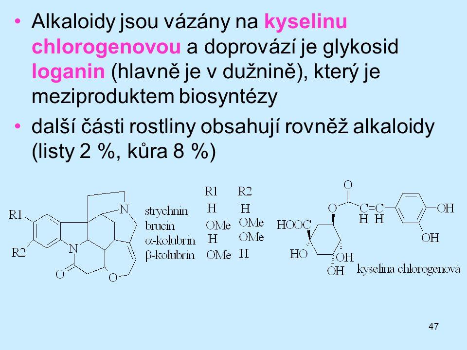 Alkaloidy jsou vázány na kyselinu chlorogenovou a doprovází je glykosid loganin (hlavně je v dužnině), který je meziproduktem biosyntézy