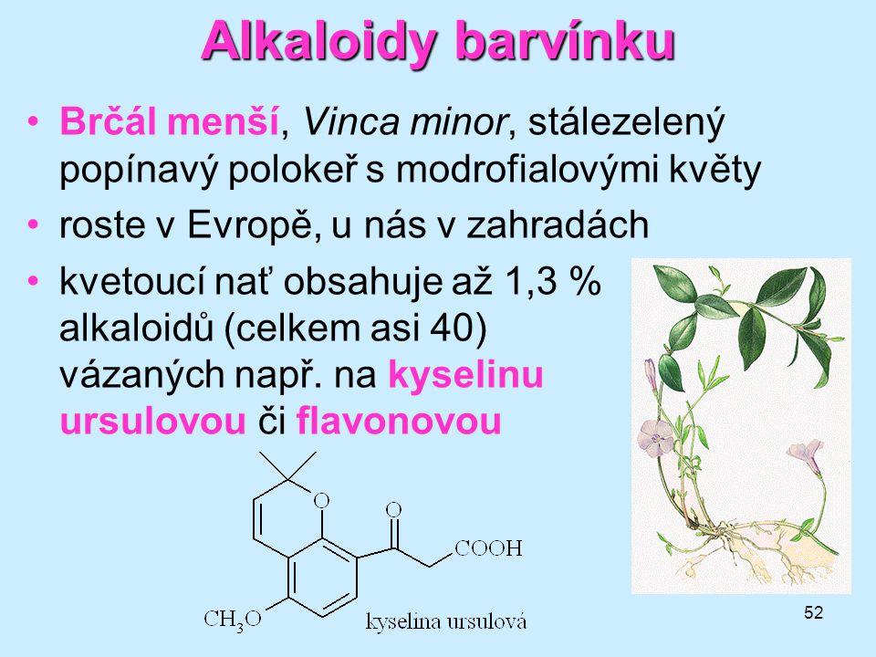 Alkaloidy barvínku Brčál menší, Vinca minor, stálezelený popínavý polokeř s modrofialovými květy. roste v Evropě, u nás v zahradách.