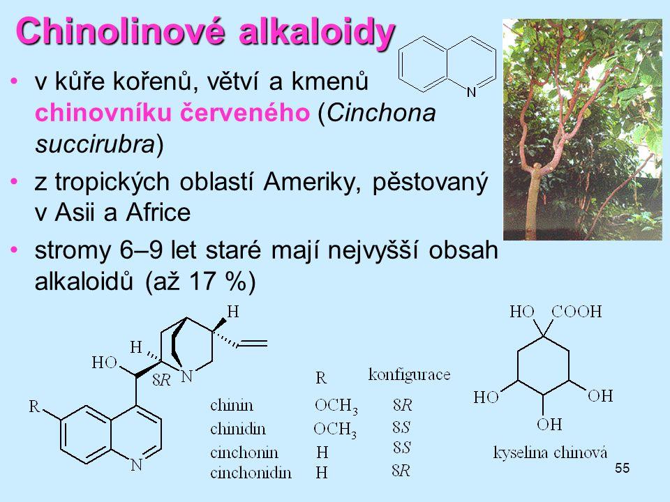 Chinolinové alkaloidy