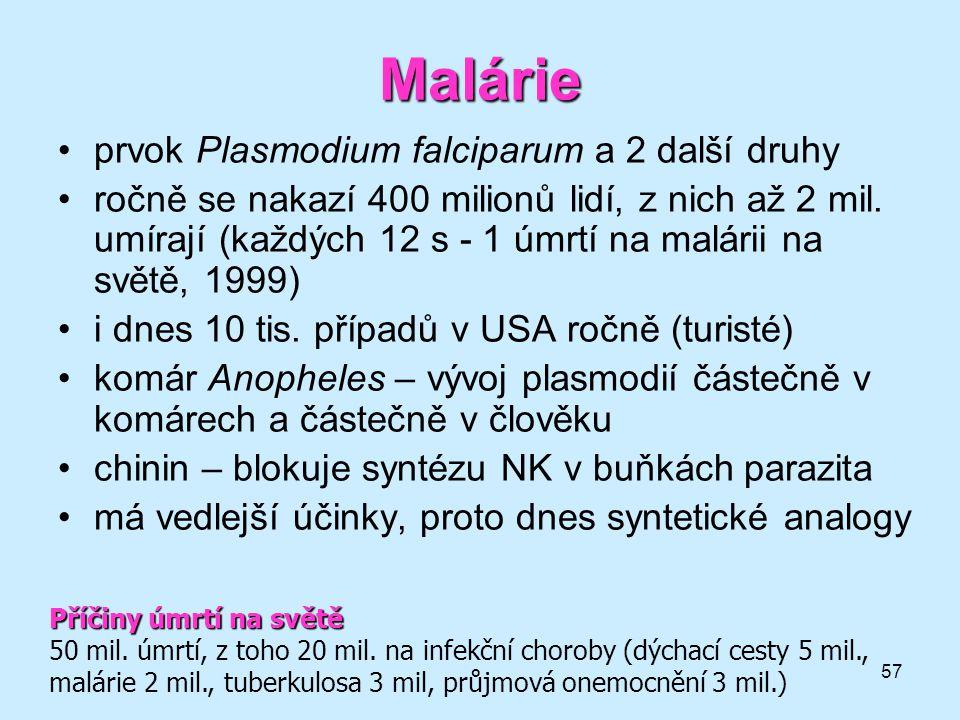 Malárie prvok Plasmodium falciparum a 2 další druhy