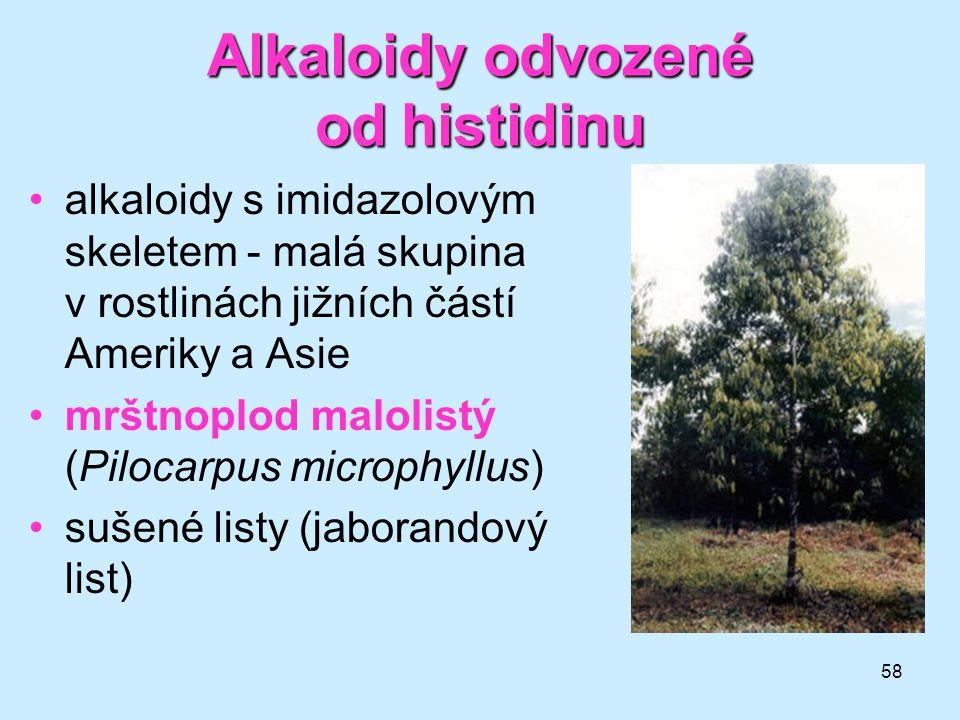 Alkaloidy odvozené od histidinu