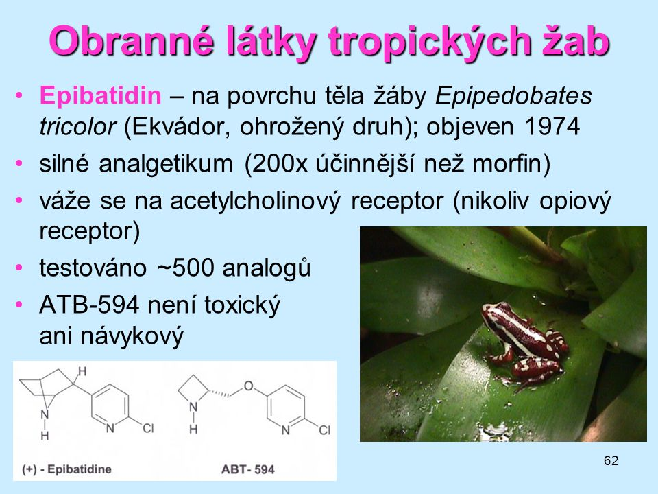 Obranné látky tropických žab