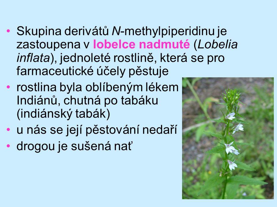 Skupina derivátů N-methylpiperidinu je zastoupena v lobelce nadmuté (Lobelia inflata), jednoleté rostlině, která se pro farmaceutické účely pěstuje