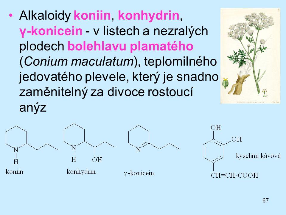 Alkaloidy koniin, konhydrin, γ-konicein - v listech a nezralých plodech bolehlavu plamatého (Conium maculatum), teplomilného jedovatého plevele, který je snadno zaměnitelný za divoce rostoucí anýz
