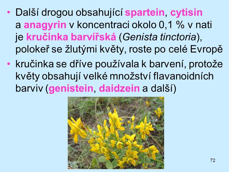 Další drogou obsahující spartein, cytisin a anagyrin v koncentraci okolo 0,1 % v nati je kručinka barvířská (Genista tinctoria), polokeř se žlutými květy, roste po celé Evropě