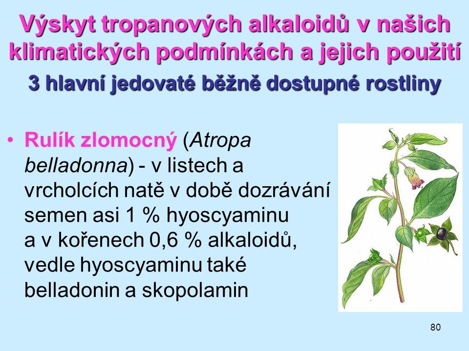 Výskyt tropanových alkaloidů v našich klimatických podmínkách a jejich použití 3 hlavní jedovaté běžně dostupné rostliny